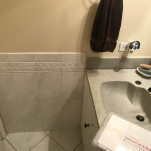 Bathroom Remodeling in Medinah, Illinois: Before Photo