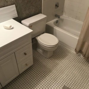 Bathroom Before Remodeling in Park Ridge IL