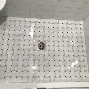 Remodeled shower in Park Ridge IL
